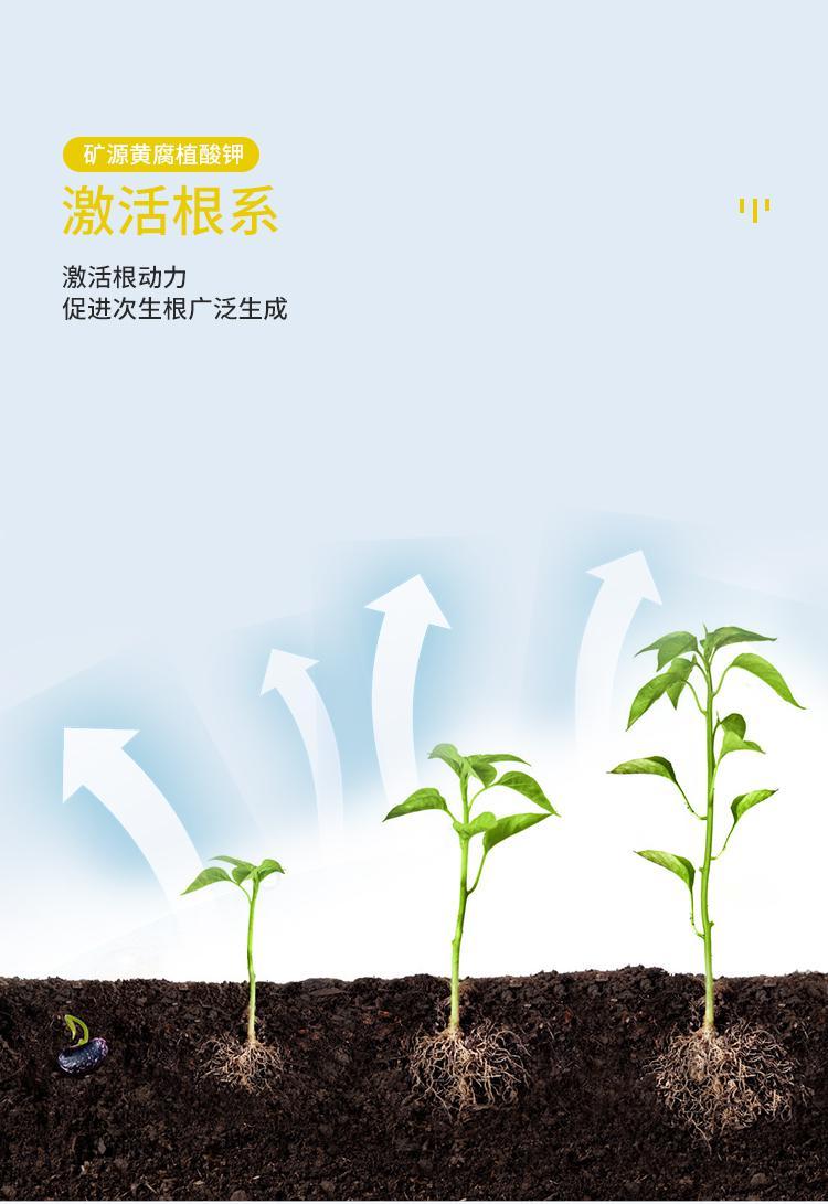 詳情頁_12(1).jpg