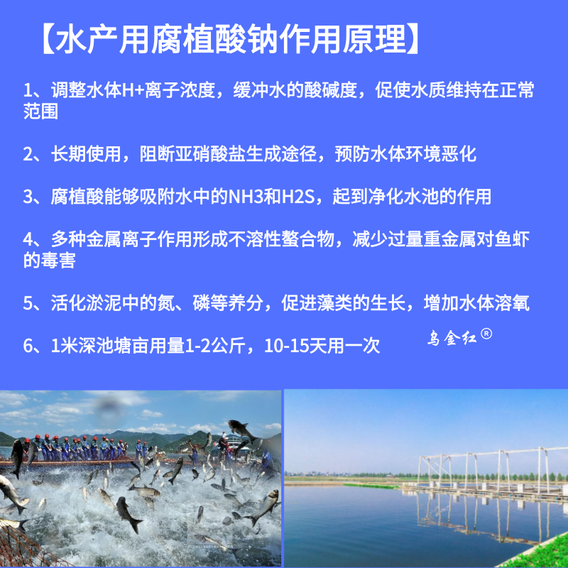 水产用作用原理_主图直通车_2019.06.21.png